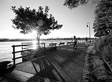 Teneriffe_boardwalk230px